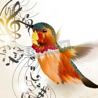 Bild Vector illustration with realistic humming bird  and notes for design