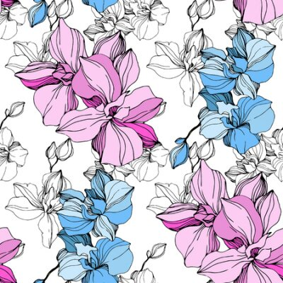 Bild Vector Pink and blue orchid. Floral botanical flower. Wild spring leaf wildflower isolated. Engraved ink art. Seamless background pattern. Fabric wallpaper print texture.