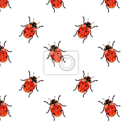 Vector red Marienkäfer nahtlose Muster
