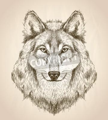 Bild Vector Skizze Darstellung eines Wolf-Kopf Vorderansicht, Schwarz-Weiß-Vektor Wildlife Design.