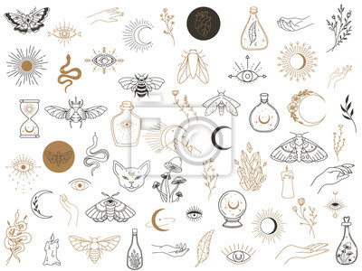 Bild Vector witch magic design elements set. Hand drawn, doodle, sketch magician collection. Witchcraft symbols. Perfect for tattoo, textile, cards, mystery