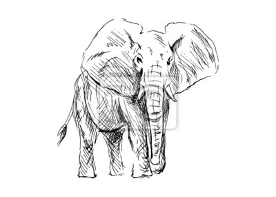 Vektor-Illustration