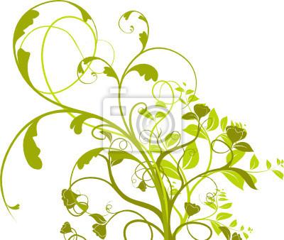 Bild Vektor-Set - Pflanze mit Blüten auf weißem Hintergrund