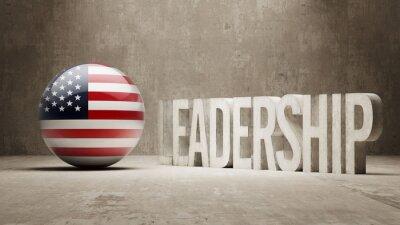 Vereinigte Staaten. Führungskonzept