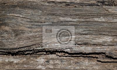 Verrottende Holzdiele Leinwandbilder Bilder Adobe Verrotten
