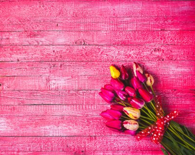 Verschiedene bunte Tulpen