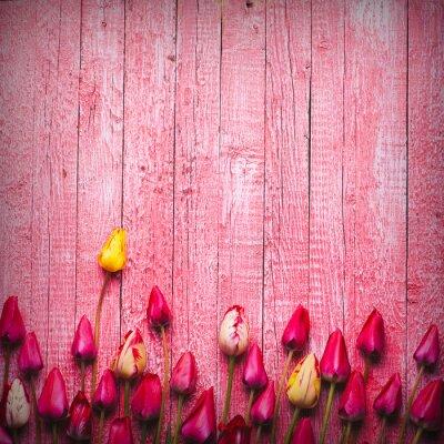 Verschiedene Tulpen und Flieder