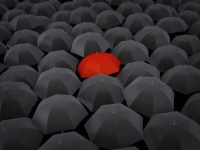 Bild Viele Regenschirme