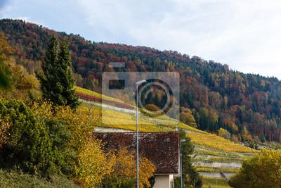 Bild village of switzerland autumn