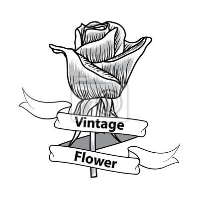 Vintage Flower Black And White Of Rose Leinwandbilder Bilder