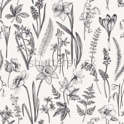Bild Vintage nahtlose Blumenmuster. Frühlingsblumen und Kräuter. Botanische Illustration. Narzissen, Maiglöckchen, Nieswurz, Schneeglöckchen, Krokus. Gravur. Schwarz und weiß.