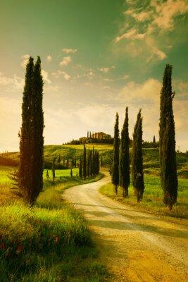 Bild Vintage Tuscany countryside landscape