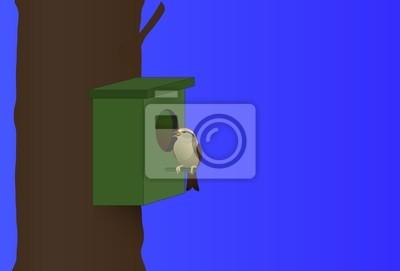 Bild Vogel auf einem Nistkasten sitzen
