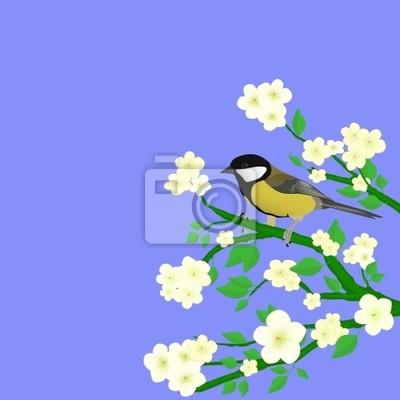 Bild Vogel auf einem Zweig Blüte