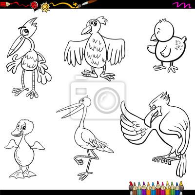 Vögel cartoon malvorlage seite leinwandbilder • bilder Strauß ...