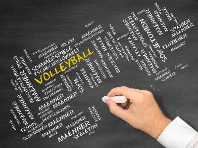 Bild Volleyball