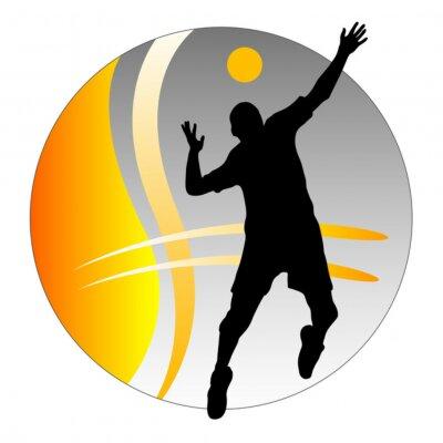 Bild Volleyball - 9