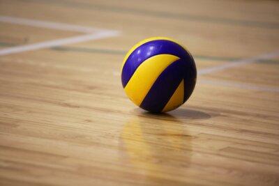 Bild Volleyball auf dem Boden