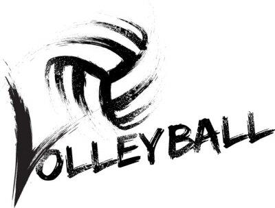 Bild Volleyball Grunge Streaks