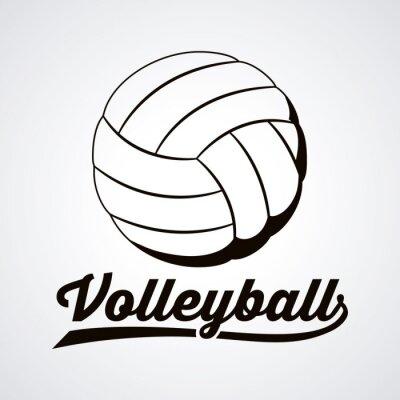 Bild Volleyball-Ligaentwurf
