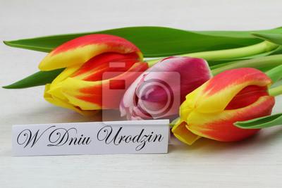 W Dniu Urodzin Happy Birthday In Polnisch Mit Bunten Tulpen