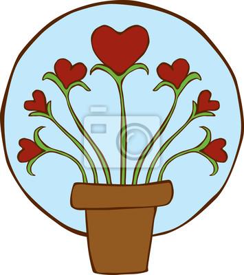 Bild Wachsende Herzen Pflanze
