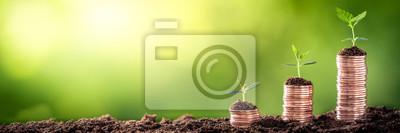 Bild Wachsendes Geld - Anlage auf Münzen - Finanz- und Anlagekonzept