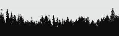 Bild Wald Silhouette Hintergrund.