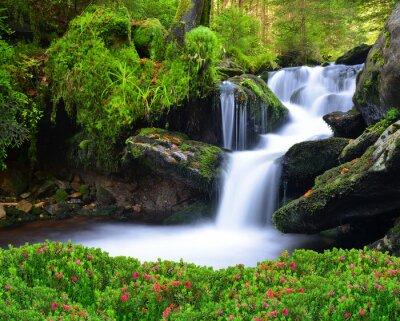 Bild Wasserfall im Nationalpark Sumava-Tschechische Republik