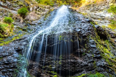Bild Wasserfall im wilden Wald