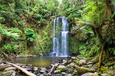 Bild Wasserfall Tasmanien
