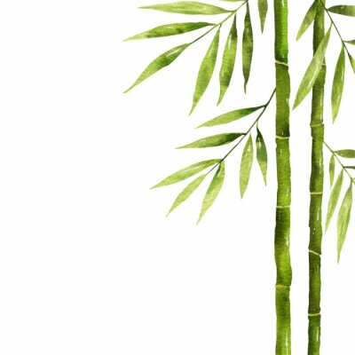Bild Watercolor bamboo stem with green leaves and copy space.
