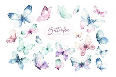 Bild Watercolor colorful butterflies, isolated butterfly on white background. blue, yellow, pink and red butterfly spring illustration.