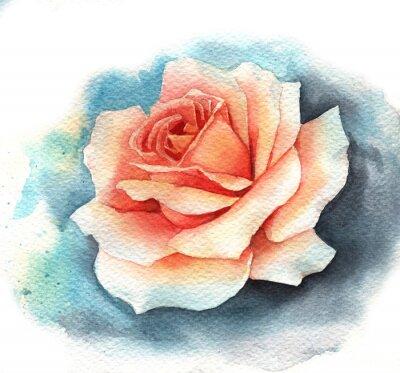 Bild Watercolor rose