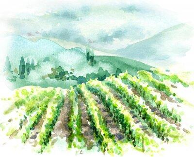 Bild Watercolor Rural Scene with Hills, Vineyard  and Trees