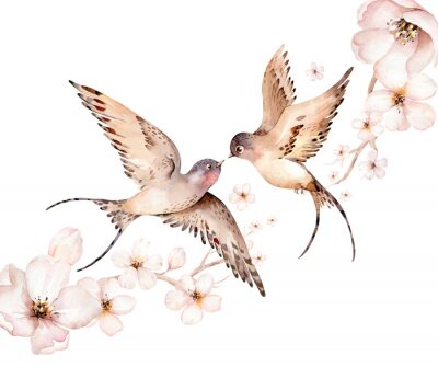 Bild Watercolor spring flying swallows isolated and blossom flowers on white background