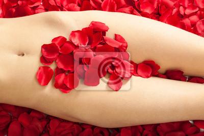 Weiblichen Korper Mit Weissen Roten Rosenblattern Leinwandbilder Bilder Scham Scham Vagina Myloview De