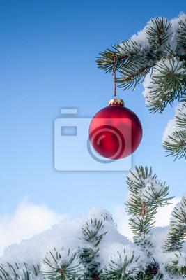 Weihnachtskugel auf einem Red Pine Tree