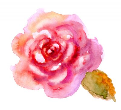 Bild Weinlese-Aquarell helle rote Rose
