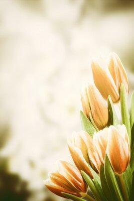 Bild Weinlese-Postkarte mit Tulpe-Blumen