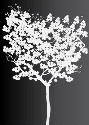 Bild weiß, Baum, Silhouette