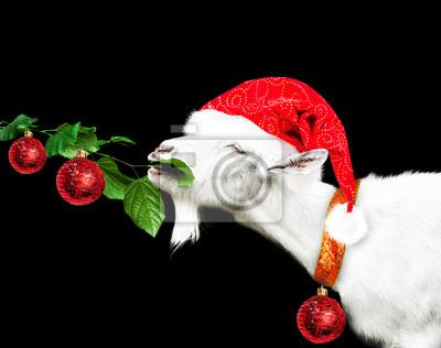 Weiß neue Jahr Ziege im Weihnachtsmann-Hut