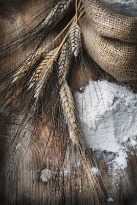 Bild Weizenähren