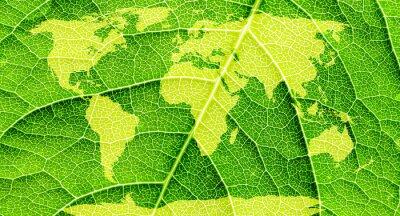 Bild Weltkarte, Kontinente in grünen Blatt Hintergrund.