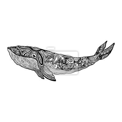 Whale Vector Zentangle Print Erwachsene Ausmalbilder