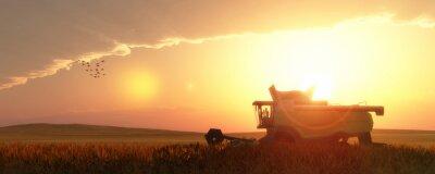 Bild wheat harvester