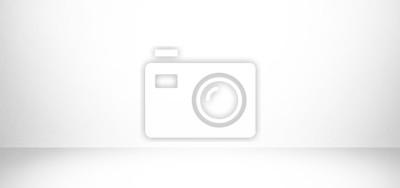 Bild white and gray studio background