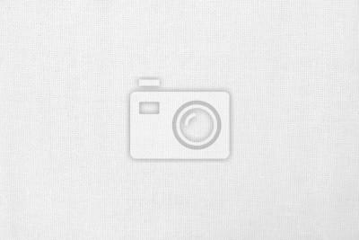 Bild White cotton fabric texture background, seamless pattern of natural textile.