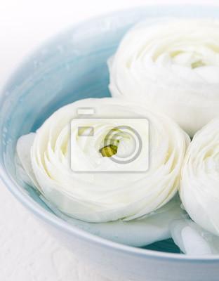 Spa wellness blumen  White schwimmende ranunculus-blumen spa wellness-hintergrund ...