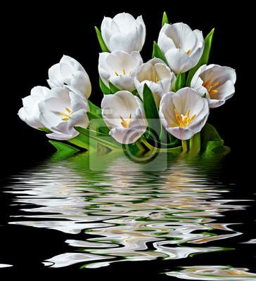 Bild white tulips